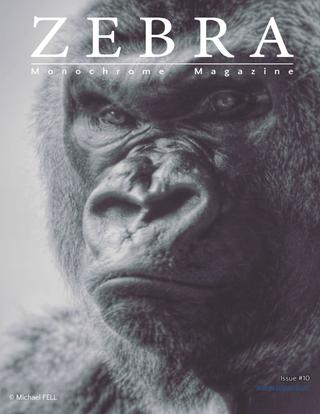 Zebra Magazine 10 - Winners Portfolio of 5th Zebra Awards