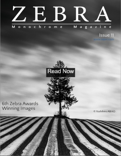Zebra Magazine 11 - The 6th Zebra Award Annual Book