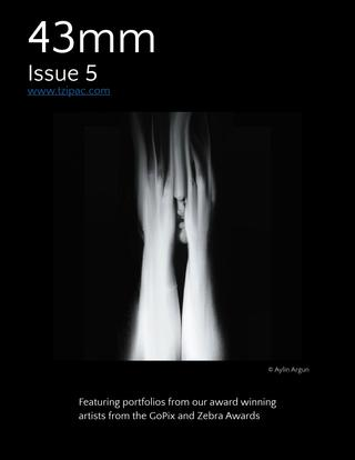 43mm Magazine Issue 5 - Winners Portfolio from 2013 GoPix and 2nd Zebra Awards