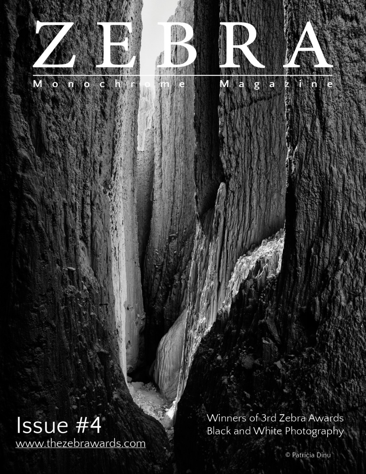 Zebra Magazine Issue 4 - 3rd Zebra Awards